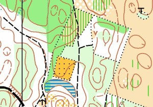 ORIENTEERING_Cartina