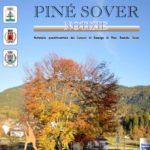 Pine-Sover-Notizie-Dicembre-2015