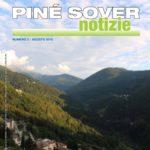 miniatura_pinesovernotizie082016
